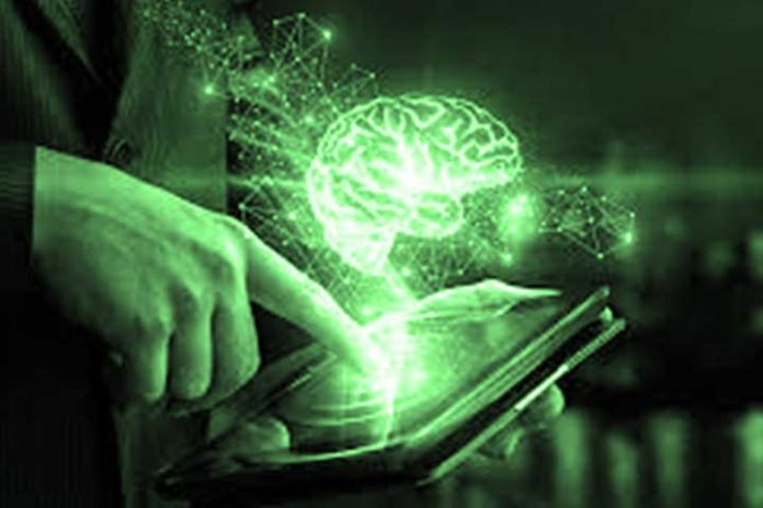 Neuroplasticity-As-A-Key-In-Business-Management